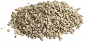 graine-de-tournesol-vijaya-595-moy (1)